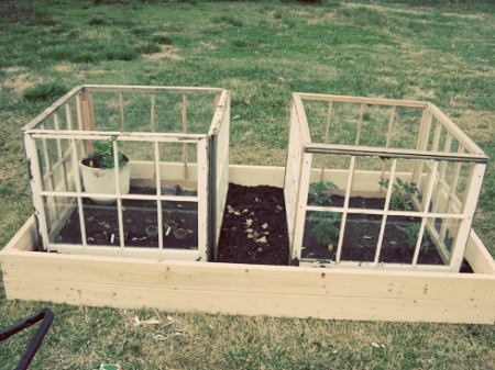 Raised Vegetable Bed Mymcmlife Com