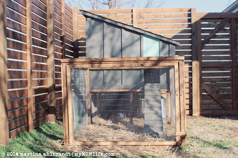 Our Chickens Have Been Living Outside In Their New Coop For 2 3 Weeks Now.  Jason And I Spent A Lot Of Time On It And Weu0027re Quite Happy With How It  Turned ...